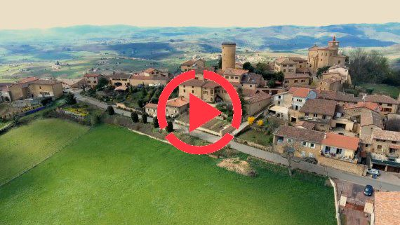 Panorama drone Beaujolais |France FullHD